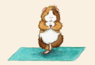 """""""Йога у морских свинок"""" от художника-иллюстратора Leslie Desantis"""