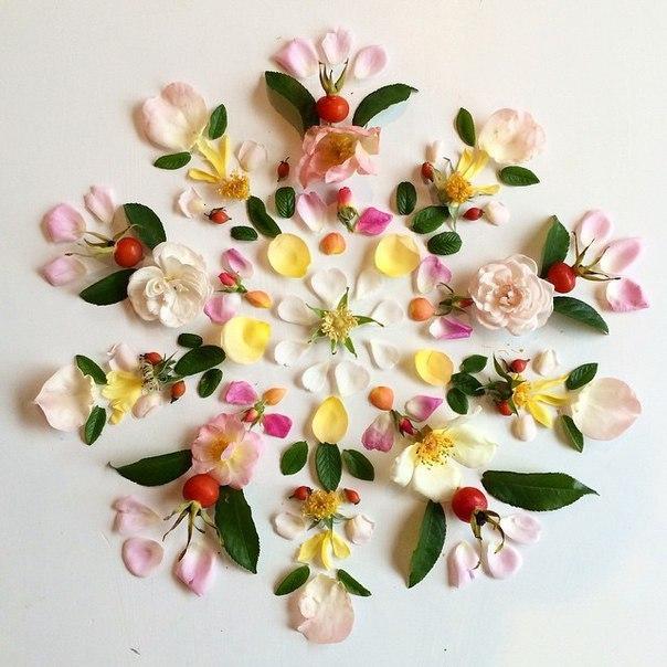 Цветочные мандалы от Bridget Collins: вдохновение в природе