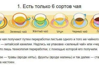 10 правил, которые позволят пить чай правильно