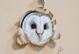 Невероятно реалистичные птицы на картинах Camille Engel
