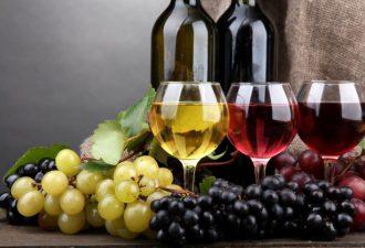 Учимся разбирать в винах: 8 видов алкогольных напитков в подробностях