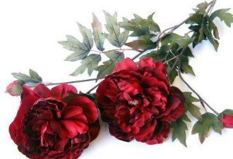 Шаблоны для изготовления цветов из шёлка и атласа своими руками