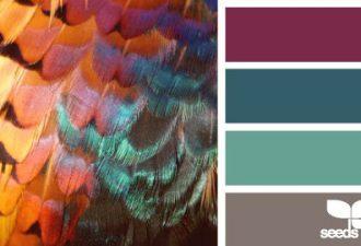 Природные сочетания цветов: самые изысканные комбинации