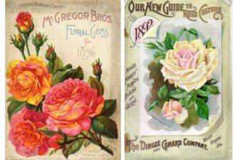 Стильные картинки для декупажа: цветочные мотивы