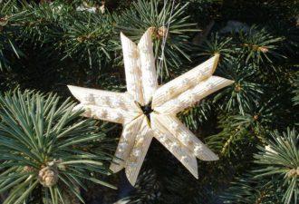 Снежинки из макарон своими руками: изготавливаем необычное ёлочное украшение