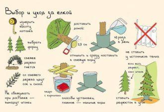 10 самых важных секретов грамотной подготовки к Новому году