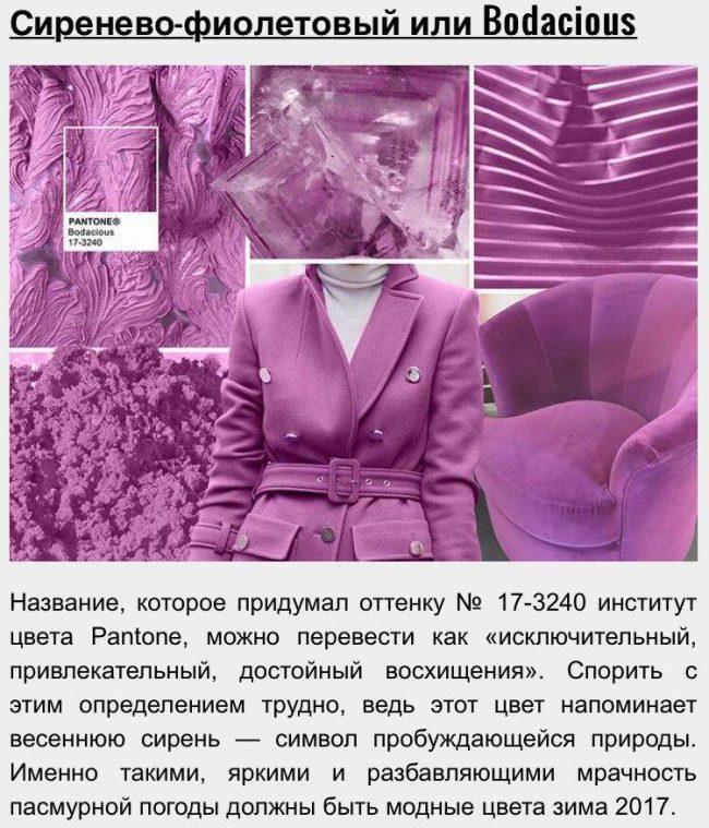 15_zveta_sezona_2016-2017_05
