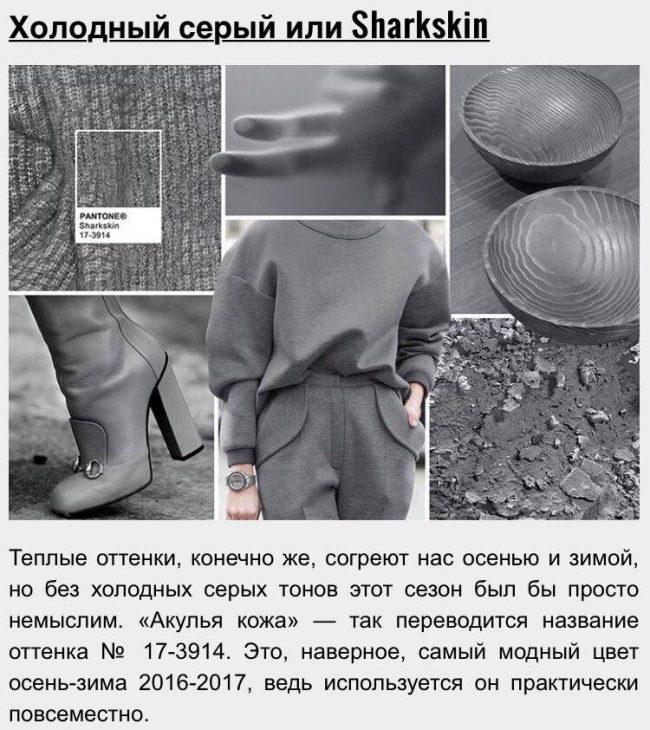 15_zveta_sezona_2016-2017_06