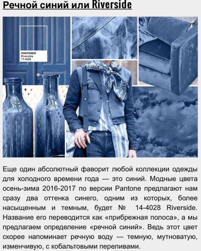 15_zveta_sezona_2016-2017_10